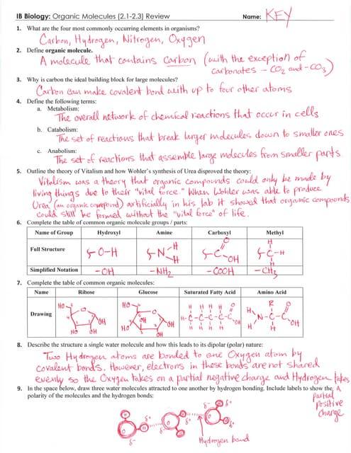 IB Organic Molecules Review Key (2.1-2.3)