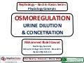 Osmoregulation (Urine Dilution & Concentration) - Dr. Gawad