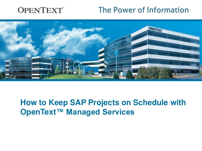 How to keep sap projects on schedule with b2b managed services sciox Choice Image