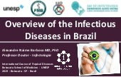 Overview of the Infectious Diseases in Brazil - Winter School on Tropical Medicine 20192019