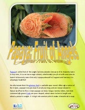Papaya fruit of angels