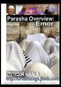 Parashat 31 emor
