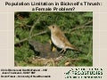 Partners in Flight 2008: Bicknell's Thrush