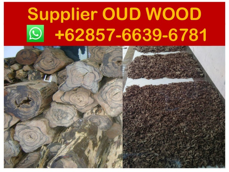 Agarwood buyer in dubai , Suppliers +62 857-6639-6781 ( WhatsApp), ag…