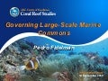 Governing Large-Scale Marine  Commons