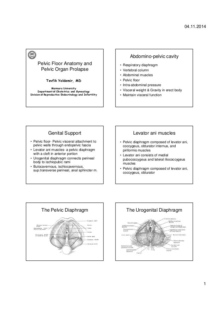 Pelvic organ prolapse - Diagnosis and treatment