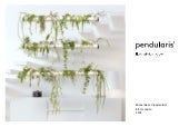 Floating Indoor Garden Pendularis