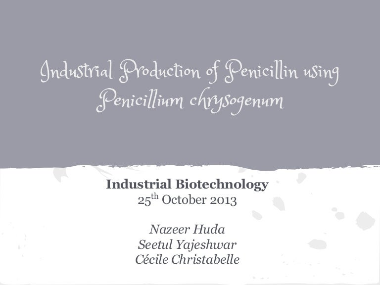 penicillin productionPenicillin G Process Flow Diagram #9