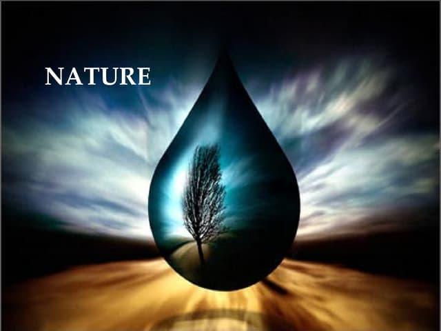 Pensamientos Filosoficos 7  Naturaleza