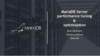 MariaDB Server Performance Tuning & Optimization