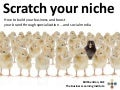 Scratch your niche: How to build your business and boost your brand through specialization ... and social media