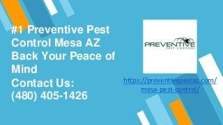 Pest Control - (480) 405-1426 - Preventive Pest Control in Mesa AZ