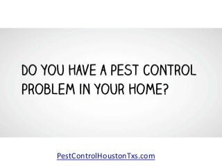 Pest Control Houston Tx - Professional Pest Exterminators in Houston Free Quote