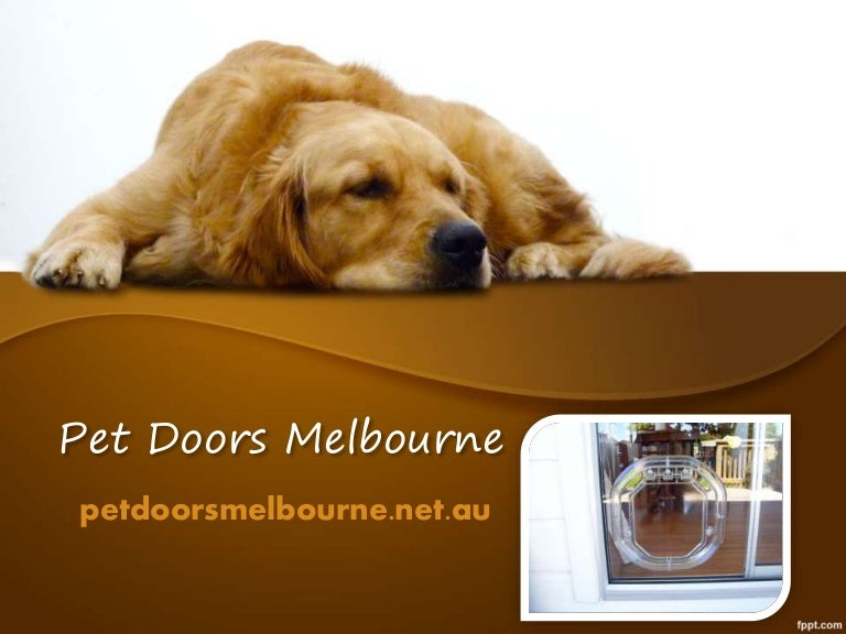 Pet doors melbourne