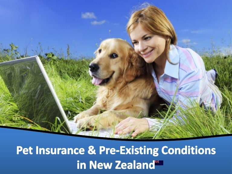 Pet Insurance & Pre-Existing Conditions in New Zealand