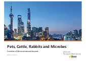 Pets, Cattle, Rabbits and Microbes