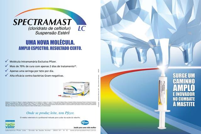 Pfizer   spectramast lc - folheto técnico
