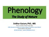 Phenology - The Study of Nature