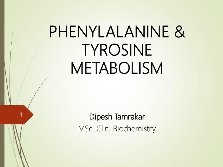 Phenylalanine Tyrosine Amino Acid Metabolism