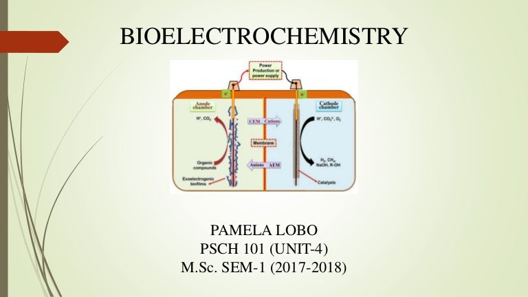 Bioelectrochemistry.. Ions, Surfaces, Membranes