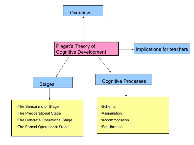 theory of cognitive development essay What is piaget's theory of cognitive development  dasen shares in his essay in the book psychology and  the theory believes development to be about.