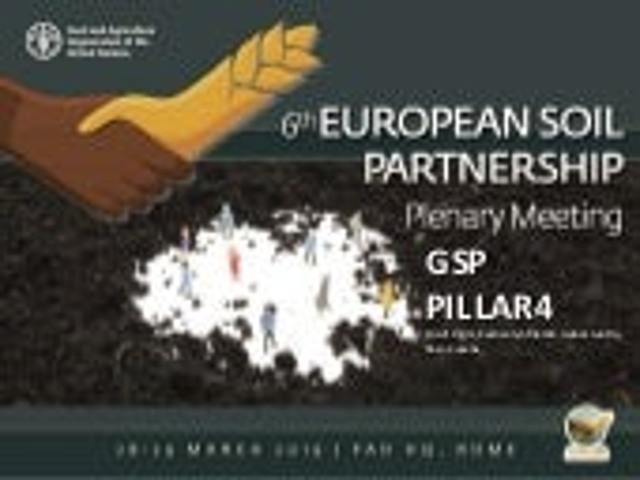 GSP Pillar 4