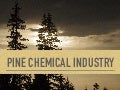 Pine chemical industry presentation