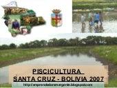 Piscicultura En Santa Cruz Bolivia