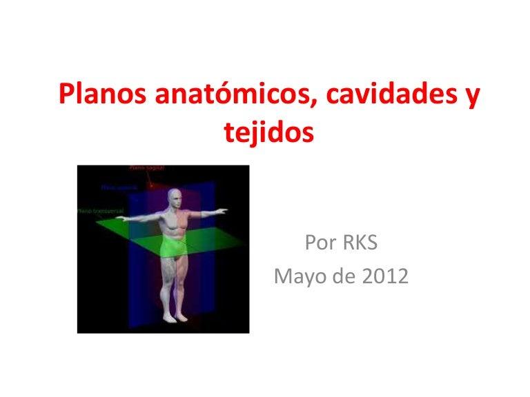 Planos anatómicos, cavidades, tejidos