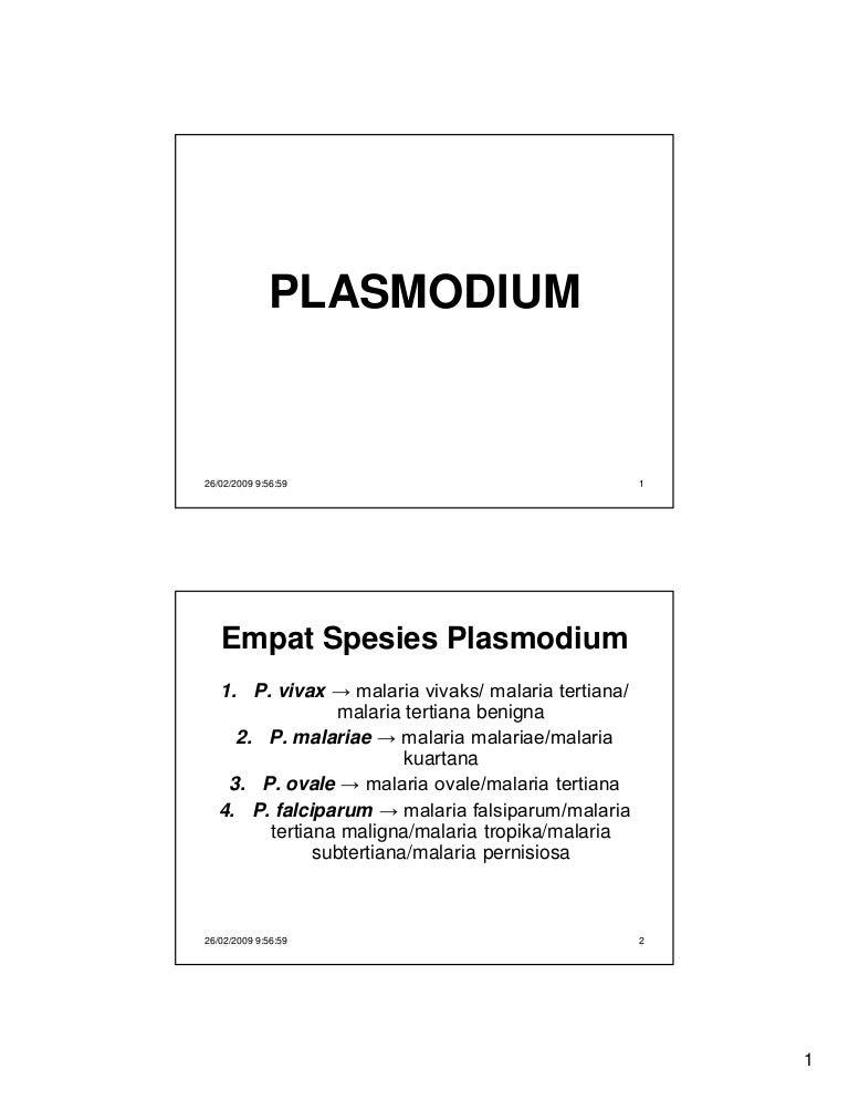 a malária plazmodium skizogony életciklusában folytatódik)