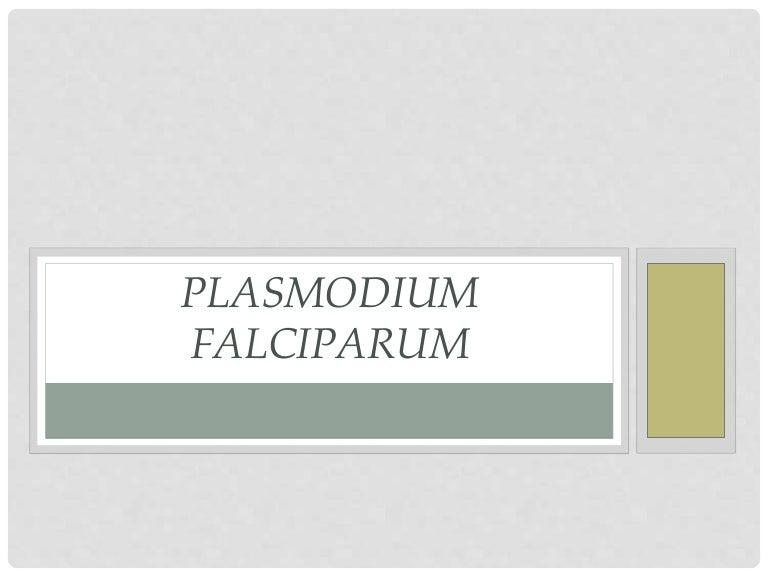 Képek a malária plazmodiumról.