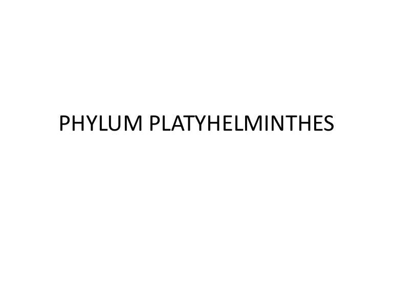phylum platyhelminthes osztály cestoda példák)
