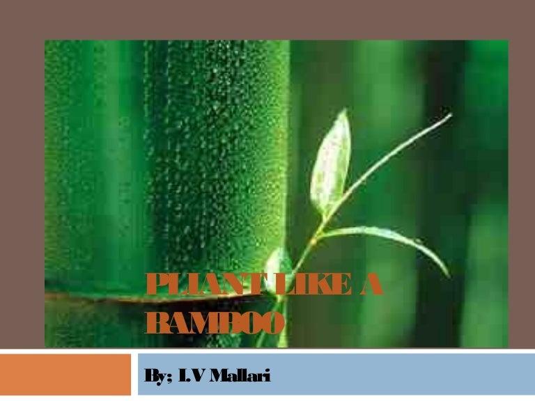 pliant like a bamboo i v mallari Poem of pliant like the bamboo by iv mallari | jan 30, 2007 poem of pliant like the bamboo by iv mallari follow  1 answer  report abuse best.