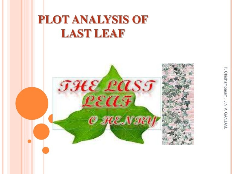 plot analysis of last leaf