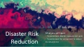 Policy and disaster risk reduction
