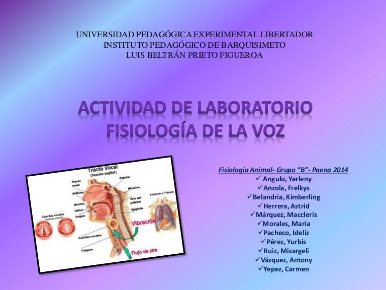 anatomia y fisiologia de la voz