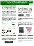Poster71: A phytoene synthase (psy) open reading frame form B-carotene-rich sweet potato as an alterntative gene for cassava genetic trasformation