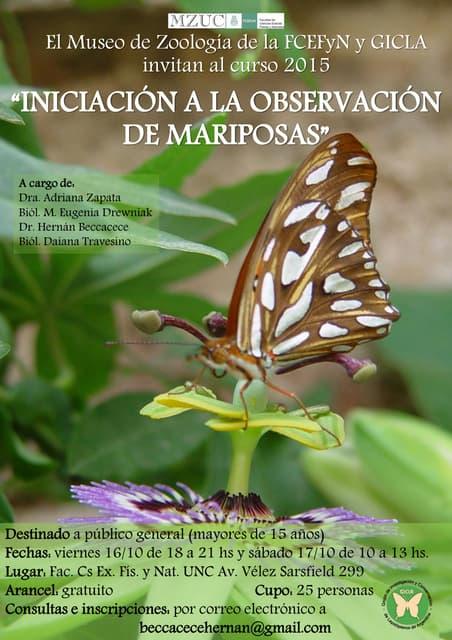 Poster de difusión del Curso de observacion de mariposas