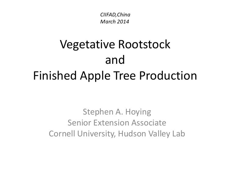 Ppt fruit-apple-nursery-tree-hoying-cornell-2014-eng