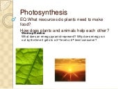 Ppt Ecol Photosynthesis