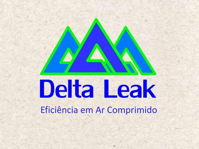 Delta Leak Company