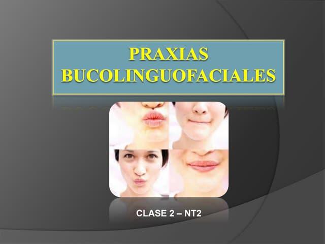 PPT Praxias  Apoyo Clase 2 - NT2