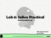 Chemical and Physical Properties: Practical Session