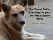 Pre travel guide- planning for your pet while you're away
