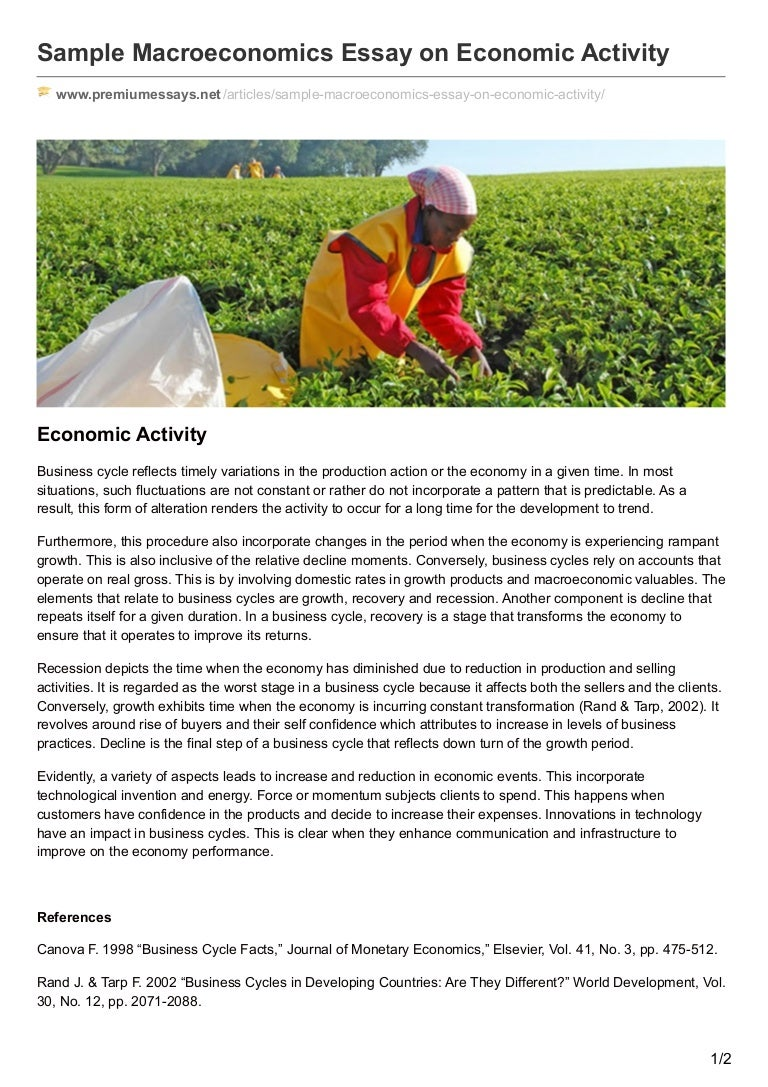 premiumessays net sample macroeconomics essay on economic activity