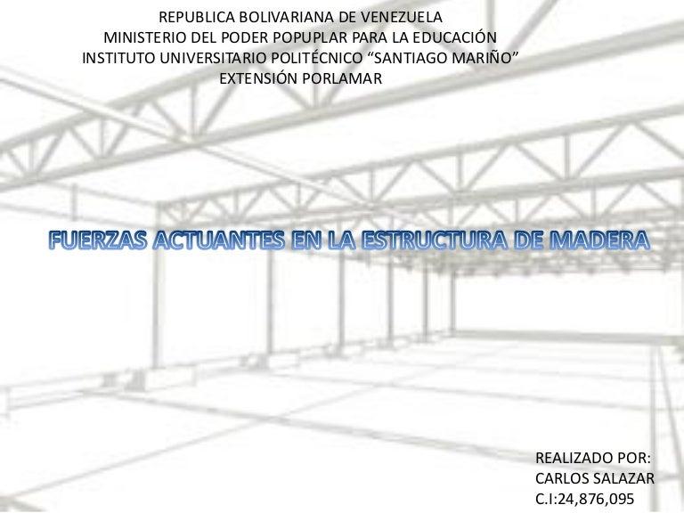 FUERZAS ACTUANTES EN LA ESTRUCTURA DE MADERA