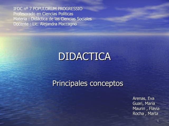 didactica principales conceptos