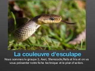 Annonce Salope Rencontre Perpignan