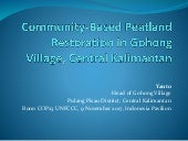 Community-based peatland restoration in Gohong Village, Central Kalimantan