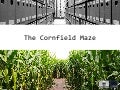 The Cornfield Maze: 15 years of digitisation and digital archiving in Flanders